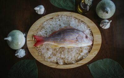 Pesca Fresca en Mardel